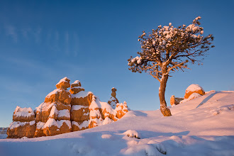 Photo: There is nothing quite like the ridiculous beauty of a snowy morning at Bryce Canyon National Park in Utah. I took this shot just after sunrise. My fingers were stiff with cold, but I hardly noticed while I was shooting. There's something about holding a camera that takes me beyond my physical self. I guess that's why I love photography!