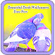 Beautiful Birds Wallpapers Free New - Androidアプリ
