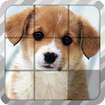 Pet Sliding Puzzle Icon