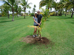 Photo: Congratulations to the new Mr. and Mrs. Matthew who recently planted a palm tree to celebrate their honeymoon at Nisbet Plantation.