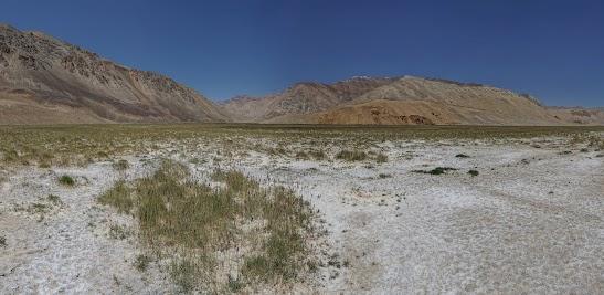 Stark erodierte Felsen vor Gras und Salzablagerungen.