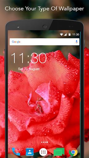 Romantic Rose Wallpaper  screenshots 3