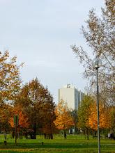 Photo: Bologna, parco della Casa Buia, sabato 8 novembre 2014