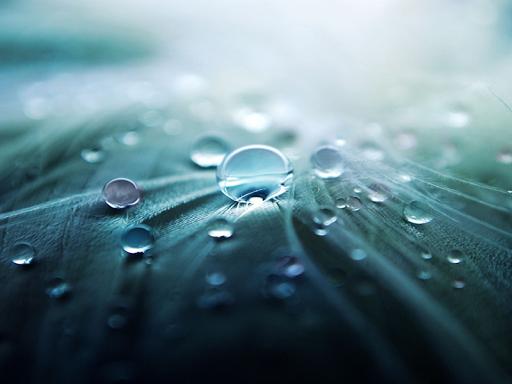 雨水滴ライブ壁紙