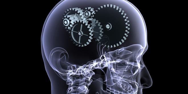 decisiones intuitivas, cerebro mecanismo