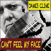 Can't Feel My Face (Ukulele/Guitar Cover)