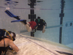 Photo: Try A Dive at UL Arena