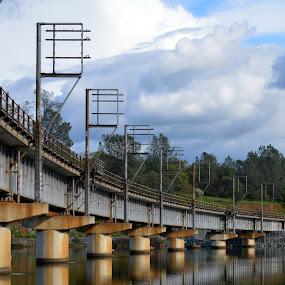 Train Bridge by Nikki Kean - Buildings & Architecture Bridges & Suspended Structures ( clouds, water, reflection, copper, vivid, train, lake, bridge )