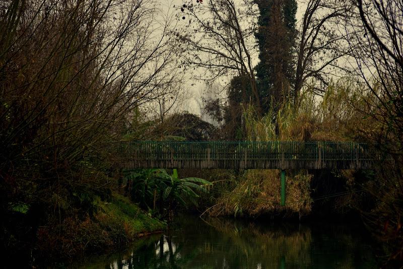 il ponte di fabryfoto