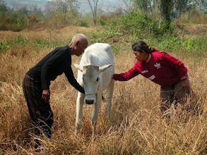 Photo: Nha Oum, breeding calf and daughter