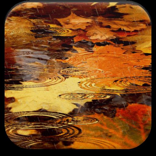 秋季动画壁纸 個人化 App LOGO-硬是要APP