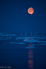 "Photo: Fata Morgana by moonlight Outside Iqaluit, Canadian Arctic From the blog http://www.kylefoto.com  If you look at the horizon you will see what looks like a band of cliffs or land, made of the same texture the sea ice is made of. This is actually the flat ocean but something is distorting it. This is a photograph of the most mysterious optical illusions most commonly observed in the Arctic. Named after the sorceress Morgan Le Fay of merlin lore this phenomenon has been attributed to the flying Dutchman, UFOs, faeries and other unusual things. It's no surprised, land seems to rise out of the ocean from nothing only to start jiggling and dancing to and fro like a mushroom made of jelly, it's very entertaining to watch newcomers to the arctic try and process what they are seeing.  This is simply an optical effect created by an inverse mirage. With a layer of cool air by the sea surrounded by a warmer atmosphere, this threshold between cool and warm air bends the light in such a way that even things beyond the curvature of the earth can be seen, causing the seascape to bend into the sky  Photographic Details: This was taken on a ship with a telephoto lens, therefore a tripod was out of the question given that we were moving. I shot this hand held holding my breath at at 1/80 sec, f5.6 ISO 1600 Canon EOS 5D at 400mm, a feat not easily done but slowly mastered with practice. I always surprise myself when I manage ""illegally"" shooting such slow shutter speeds with long lenses, practice makes perfect! If at first you get a few blurry photos, keep trying, all it takes is one good one and your work will be worth it!  If you like this, please do me a favor and share!"