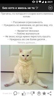 Без кота и жизнь не та ツ - náhled