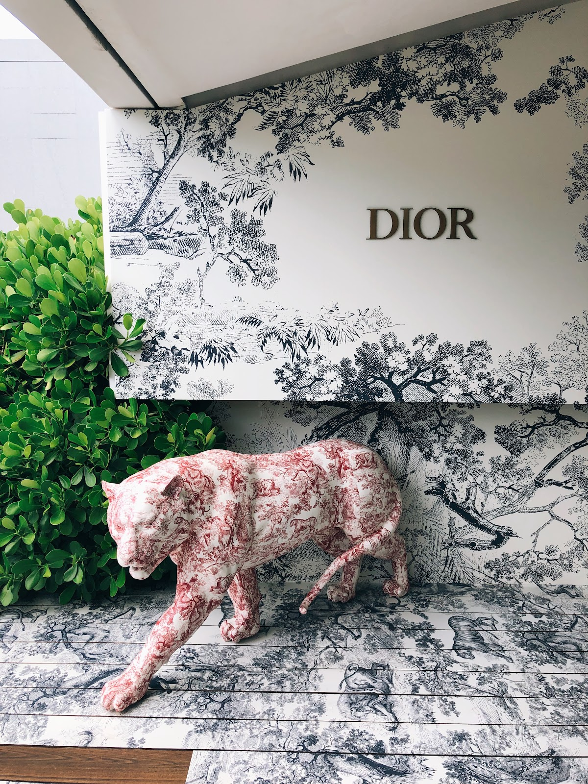 The dior café is the best thing to happen to miami design district