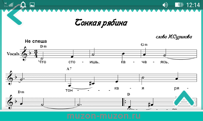 Russian folk songs- screenshot