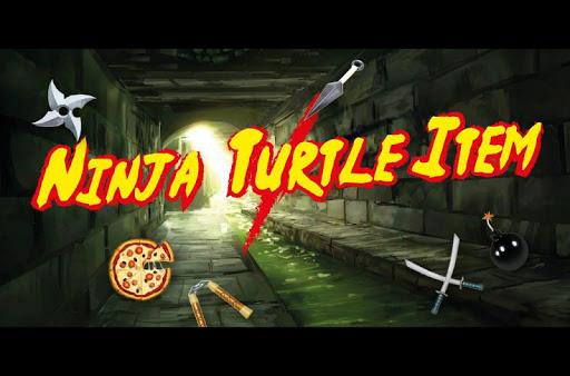 Ninja Turtle Item
