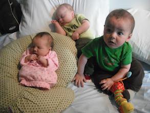 Photo: Audrey, Allie, and Quinn... Cicada Babies!