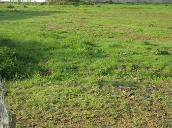 terrain à Poussy-la-Campagne (14)