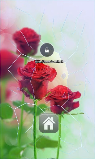 Red Roses Lock Screen