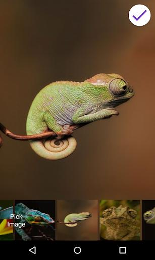Chameleon Lock Screen by George Ginkes (Google Play, United States