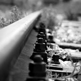 Destination unknown by Diego Menna - Transportation Railway Tracks ( binari, vanishing point, black and white, railways, tracks )
