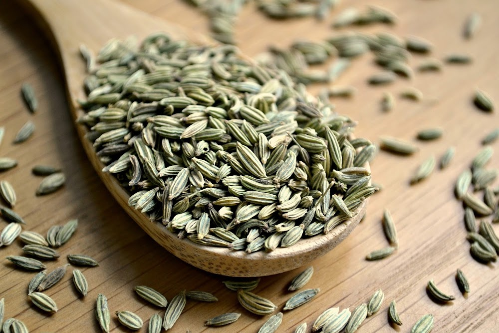 best-weight-loss-friendly-foods-organic-shastra_fennel_seeds