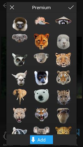 ステッカー:エキゾチックな動物