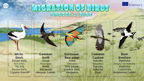 Migration of birds: miniatura de captura de pantalla