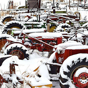 Frozen Machines* by Rob Bradshaw - Artistic Objects Antiques ( farm equipment, old machines, unused machines, farms, frozen, cold, snowy )