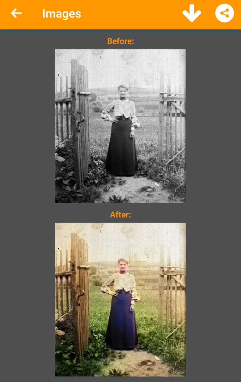 Black and White Photo Colorizer - Chromatix Screenshot 1
