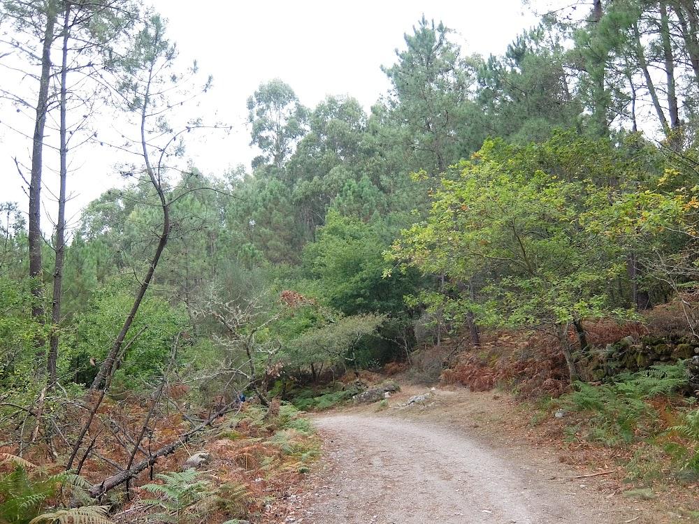 Камино Сантьяго, Португальский Путь, сентябрь 2017 (Испанская часть)
