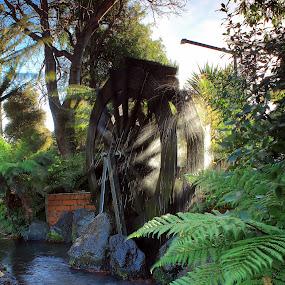 Waterwheel by Greg Van Dugteren - Artistic Objects Still Life ( water, wheel, still life, movement, waterwheel, pwcstill-life )