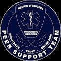RDPS PeerConnect icon