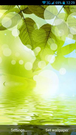 綠色的大自然動態壁紙