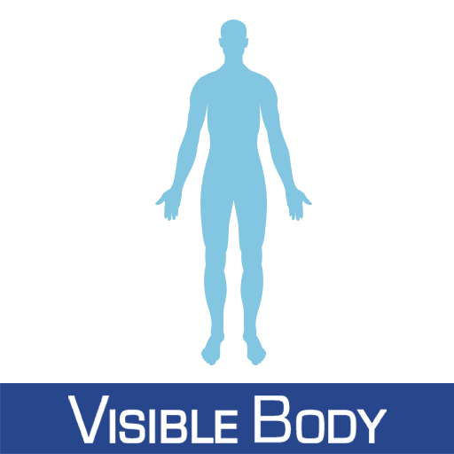 visible body - android apps on google play