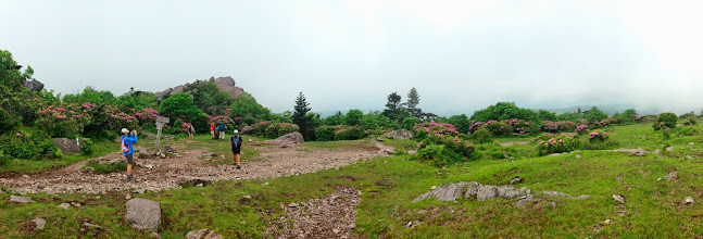 Photo: Pano of Rhododendron Gap
