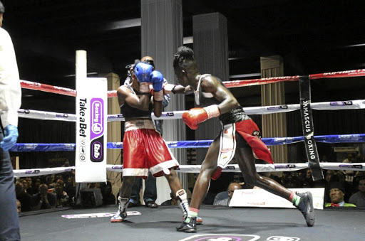 Ellen Simwaka puts Smangele Hadebe under pressure on her way to winning their WBF fight via stoppage on Saturday.