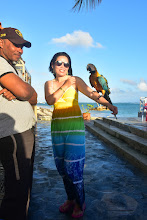 Photo: Parrot at the beach gift shop