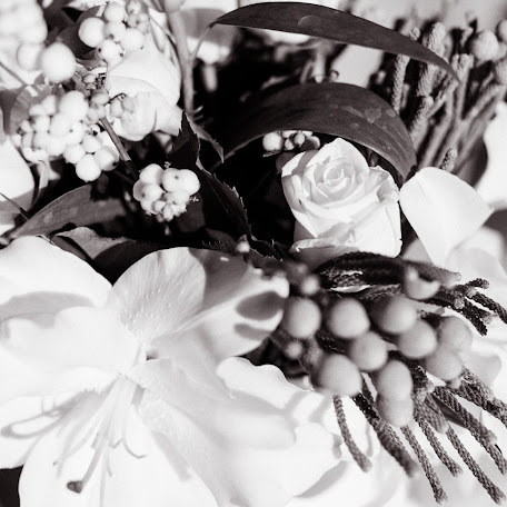 Wedding photographer Oksana Borovko (borovko). Photo of 22.09.2015