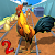 Animal Escape Rooster Run 2 file APK for Gaming PC/PS3/PS4 Smart TV