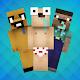 Noob Skins Download for PC Windows 10/8/7
