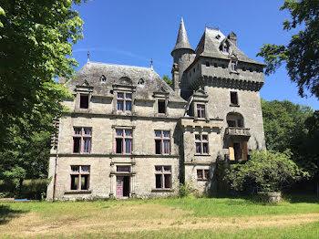 château à Montaignac-Saint-Hippolyte (19)