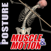 Posture by Muscle and Motion