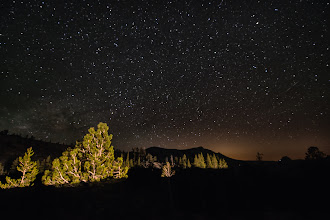 Photo: Yosemite National Park, CA  A car drove by during the long exposure just long enough to illuminate a few trees. Still dark enough to get some stars so I didn't mind :)