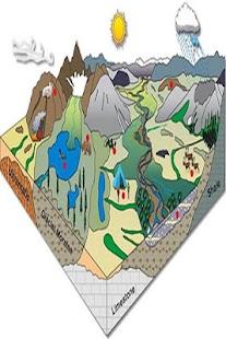 Ekosystém - náhled