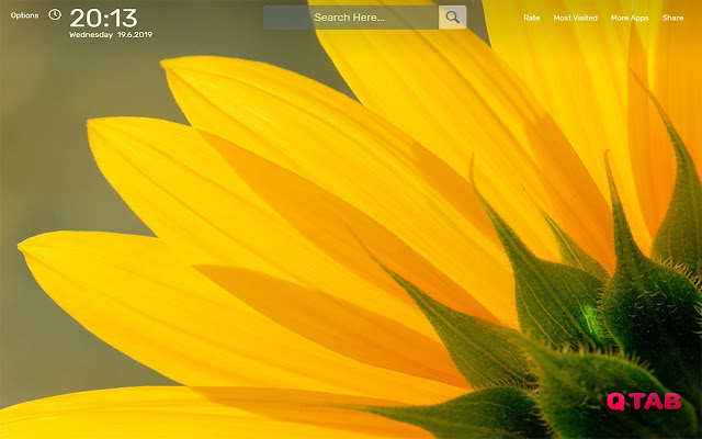 Yellow Flowers Wallpapers HD Theme