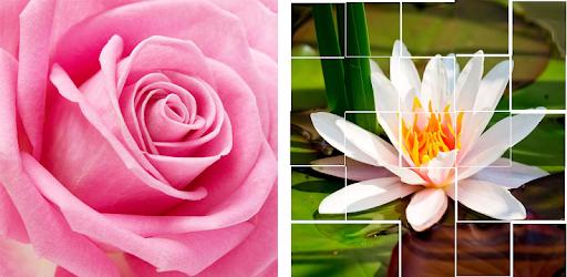 Картинки для разрезания цветы