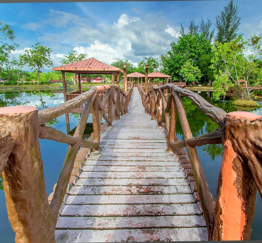 Elevated Walkways at Melati Lake, Perlis by Mala Awang - Buildings & Architecture Bridges & Suspended Structures