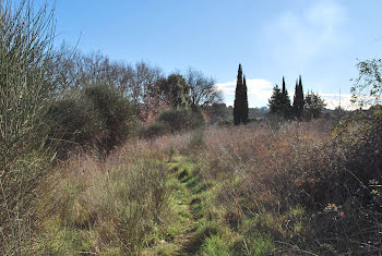 terrain à Cotignac (83)