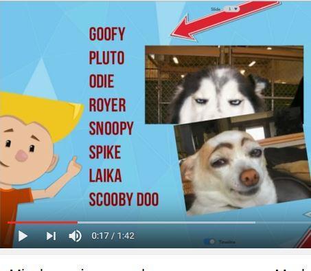 Download Nombres Para Perros Pitbull Google Play Softwares